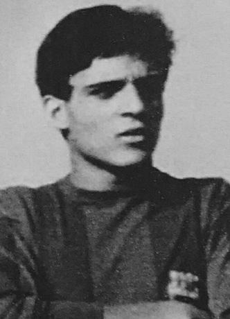 Verdú Fernández, Francesc
